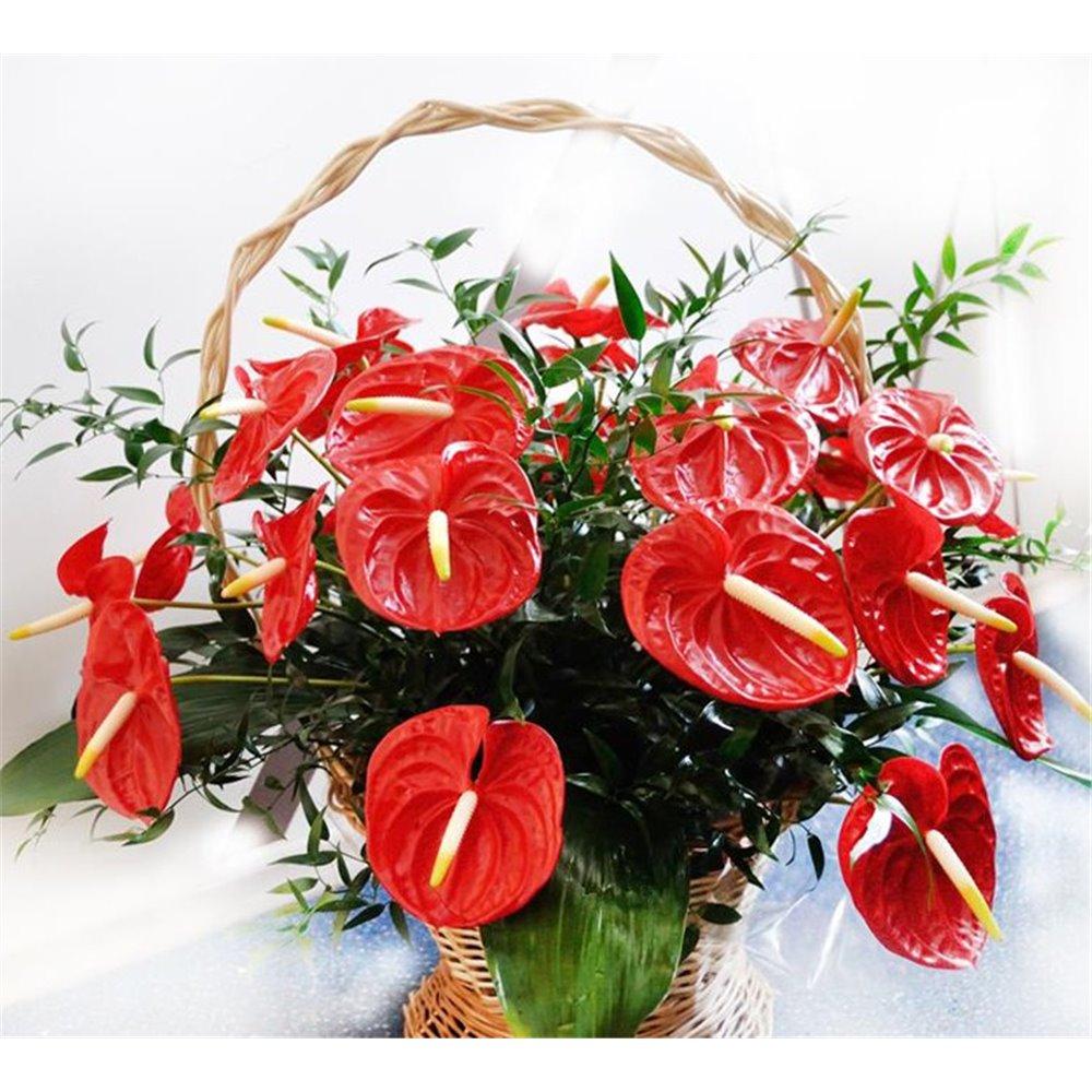 Floral tribute No. 1