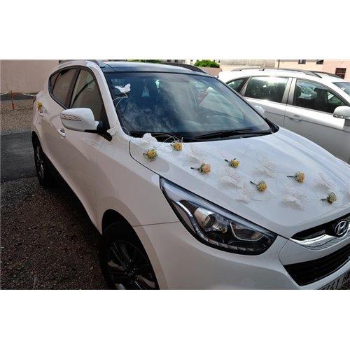 Samochód 1