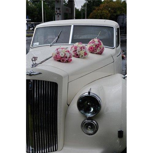 Samochód 10