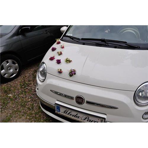 Samochód 19