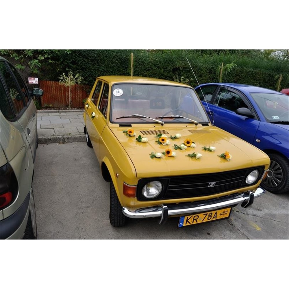 Samochód 20