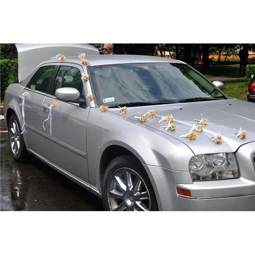 Samochód 24