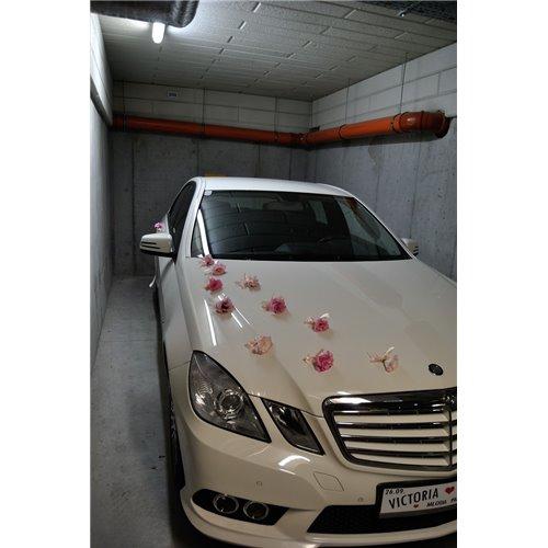 Samochód 36