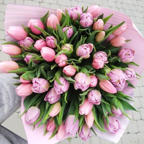 Bukiet 50 tulipanów