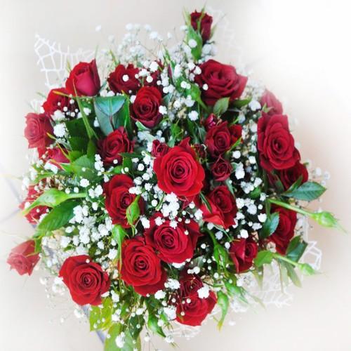 Zimowe róże