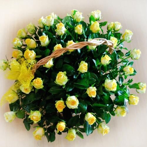 Koszyk kwiatowy słoneczny